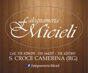 300x250micieli
