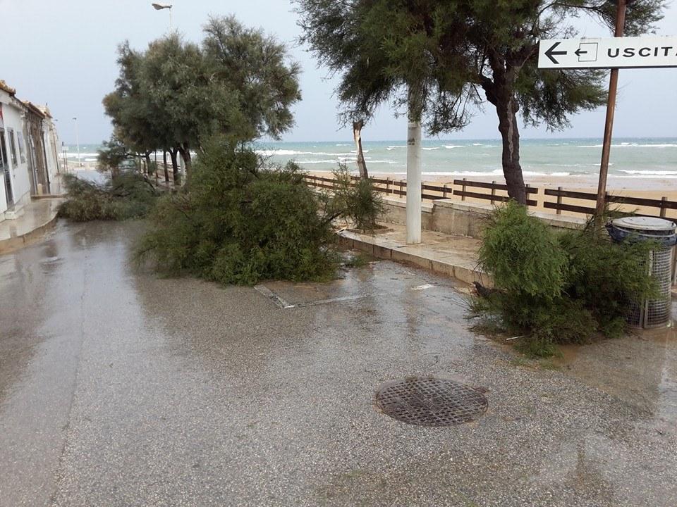 Una tromba d'aria colpisce S.Croce e la fascia costiera: abbattuti gli alberi a Punta Secca ECCO LE FOTO