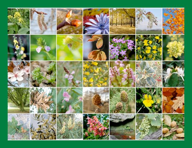 Sesta puntata della rubrica di Medicina Naturale: i fiori di Bach contro i disagi emozionali