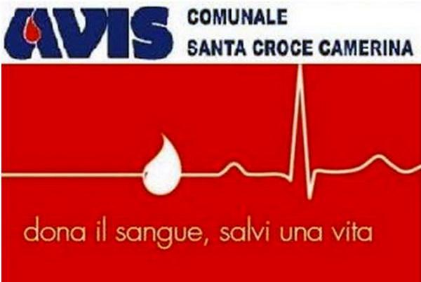 Una domenica di altruismo: dona il tuo sangue dalle 8 alle 12 all'Avis