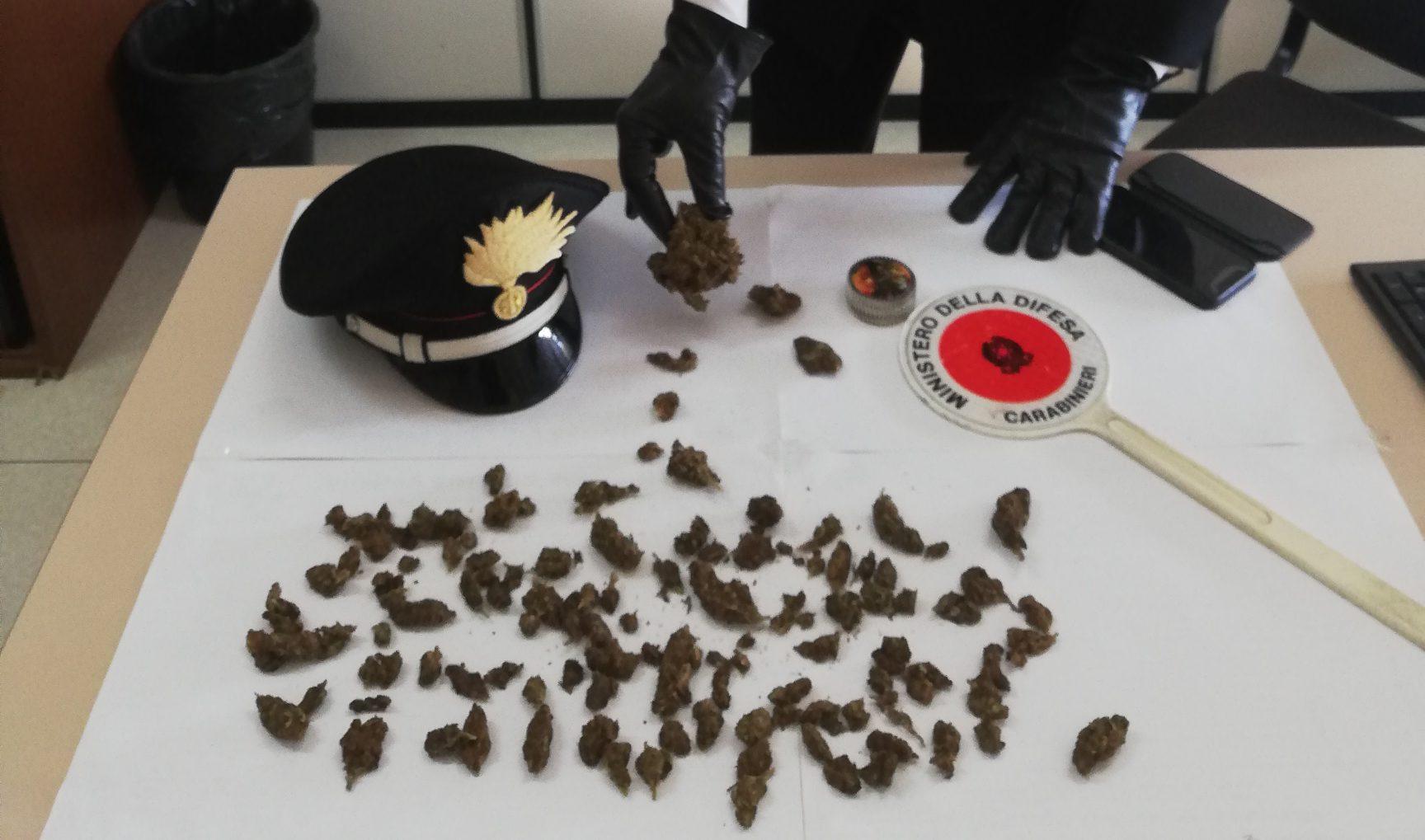 Ispica – Cede droga e coltiva marijuana in casa: arrestato un giovane di 19 anni