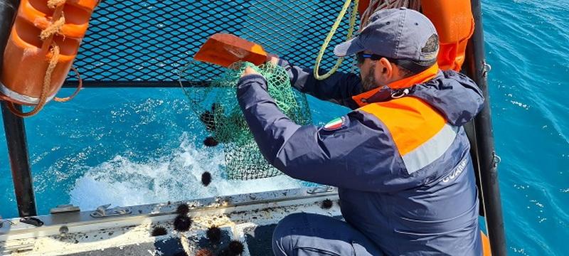 In trasferta a Santa Croce per la pesca dei ricci: multa di duemila euro