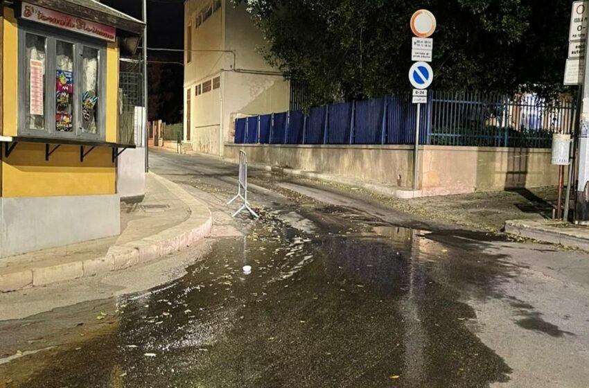 Vandali e perdite d'acqua: manomesso impianto d'irrigazione al 'Besta'